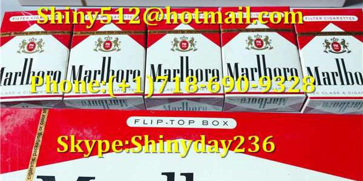 the starting Cheap Newport Cigarettes Carton stage